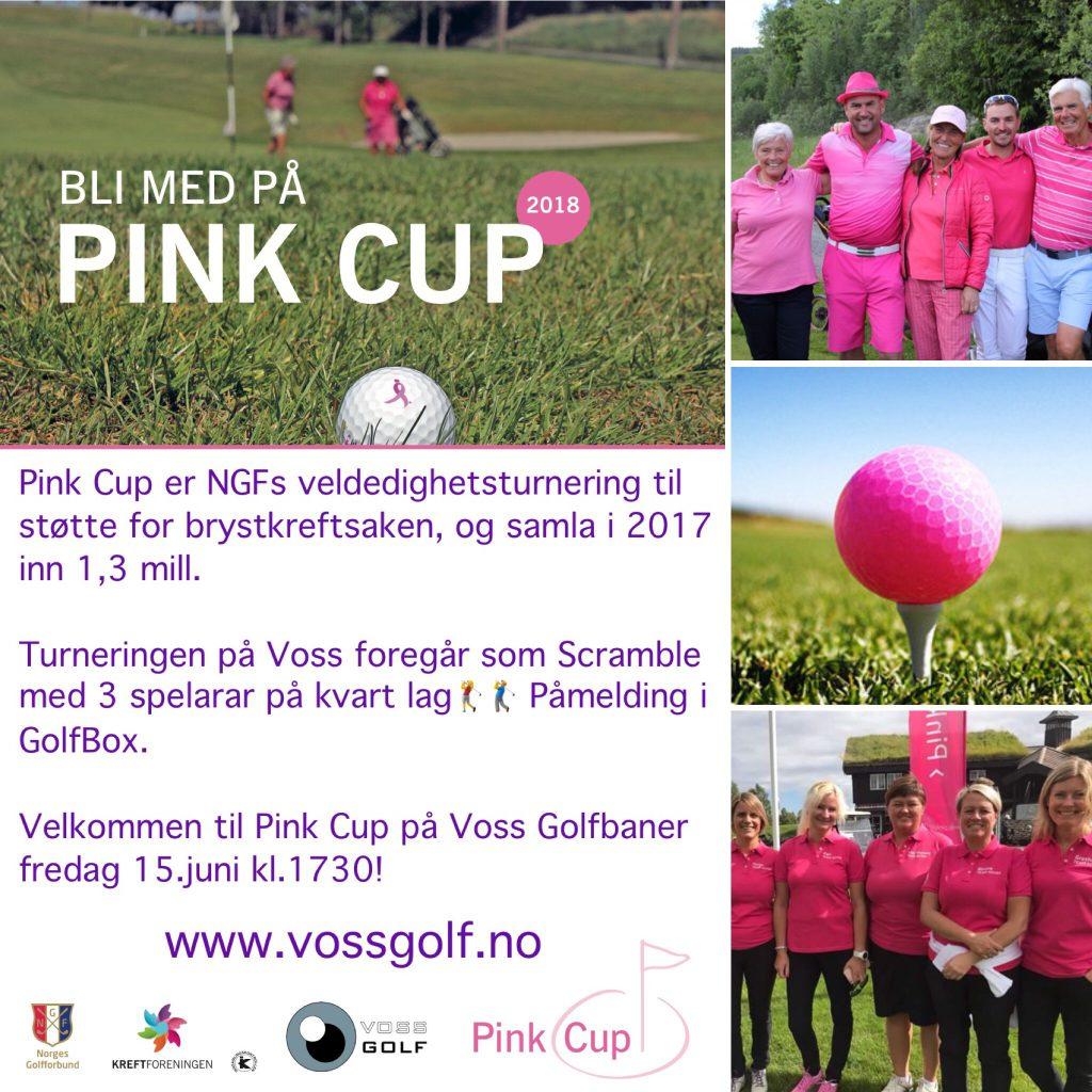 Pink Cup, Voss Golf